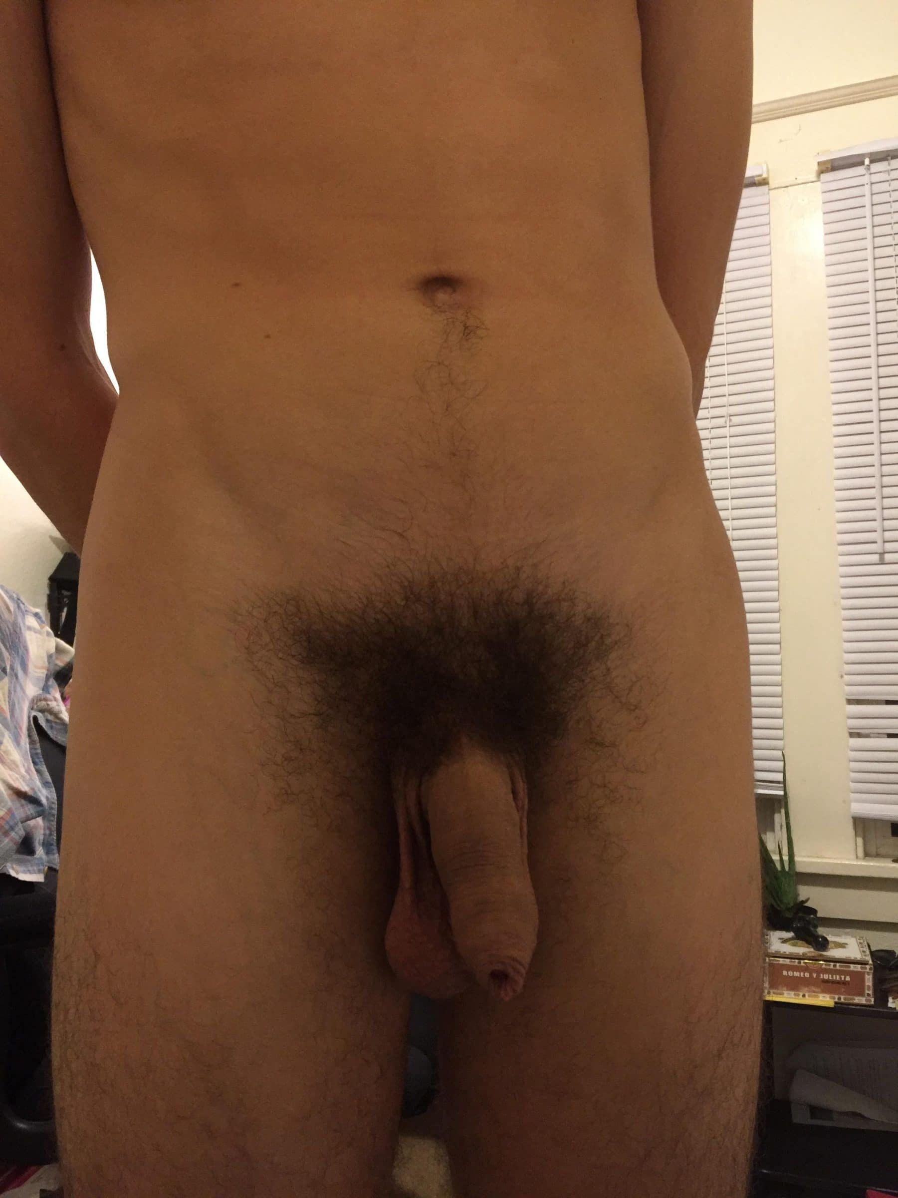 Soft hairy uncut cock
